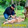 ZoologyCompany