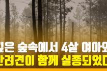 4살 아기가 숲속에서 실종되었다